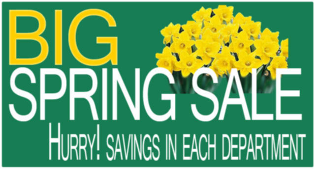 BIG SPRING Sale LifeSolutionsPlus.com